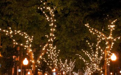 Tree lighting along 50th street